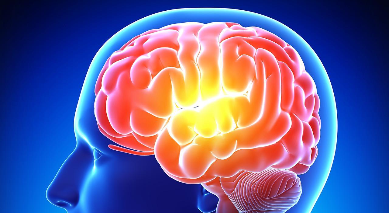 Posgrado en Acción Motriz en los Procesos Cerebrales del Aprendizaje