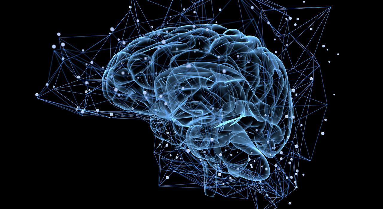Postgrado en Acción Motriz en los Procesos Cerebrales del Aprendizaje