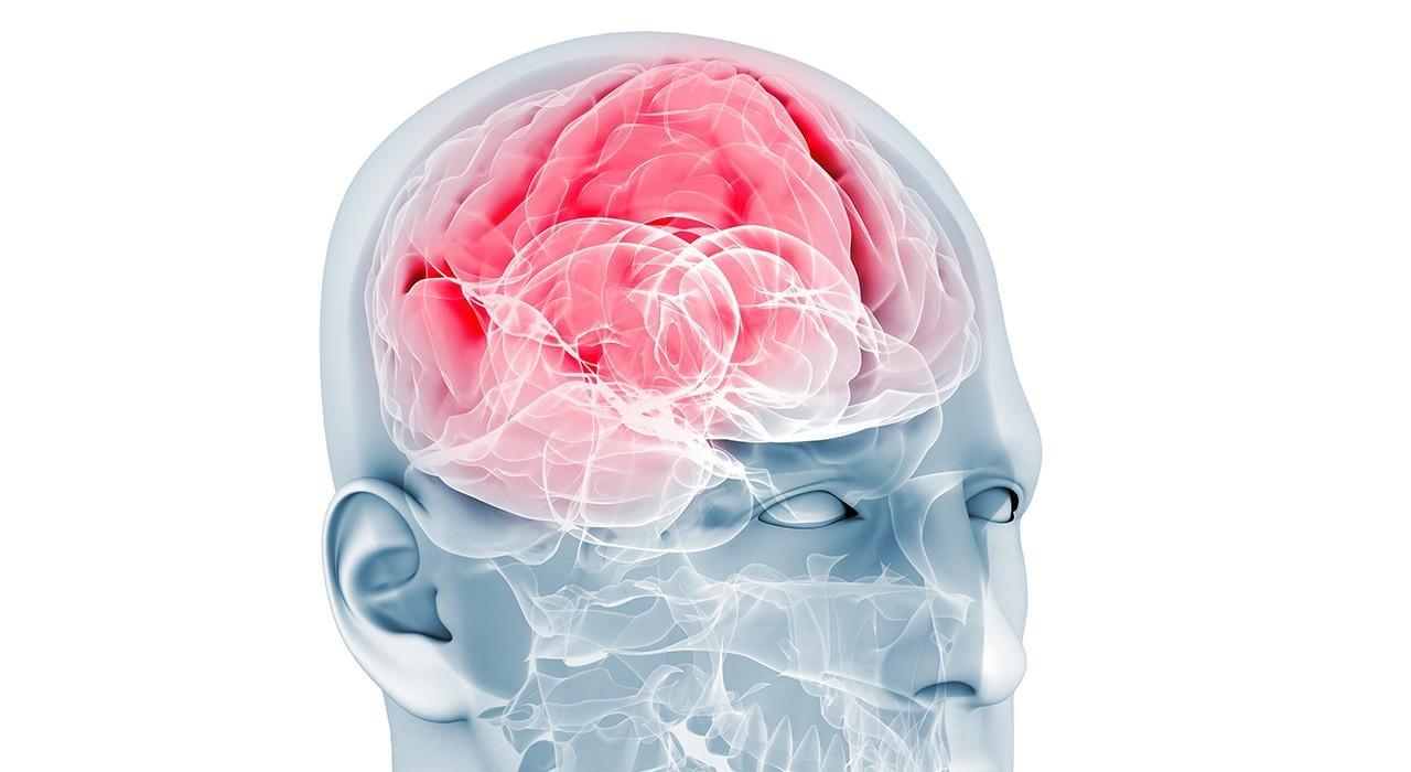 Posgrado en Emociones en los Procesos Neuroeducativos desde la Acción Motriz