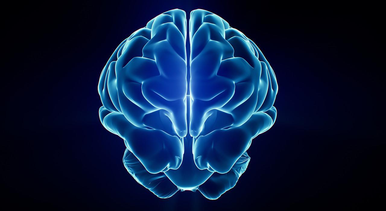Postgrado en Emociones en los Procesos Neuroeducativos desde la Acción Motriz