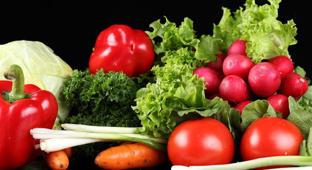 Programa en Nutrición en Enfermedades Renales para Enfermería