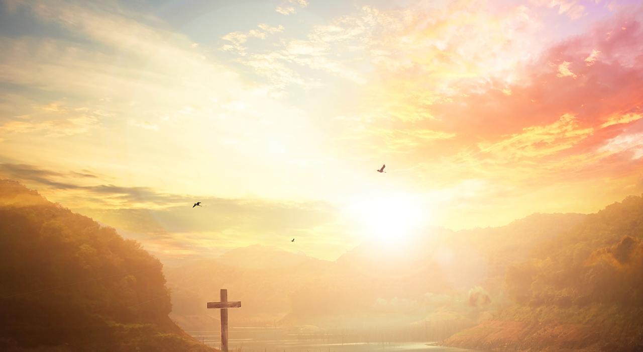 Programa en Historia de la Salvación