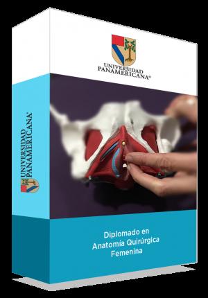 Diplomado en Anatomía Quirúrgica Femenina