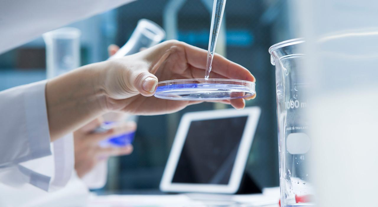 Diplomado en Investigación en Medicina Integrativa para Enfermería