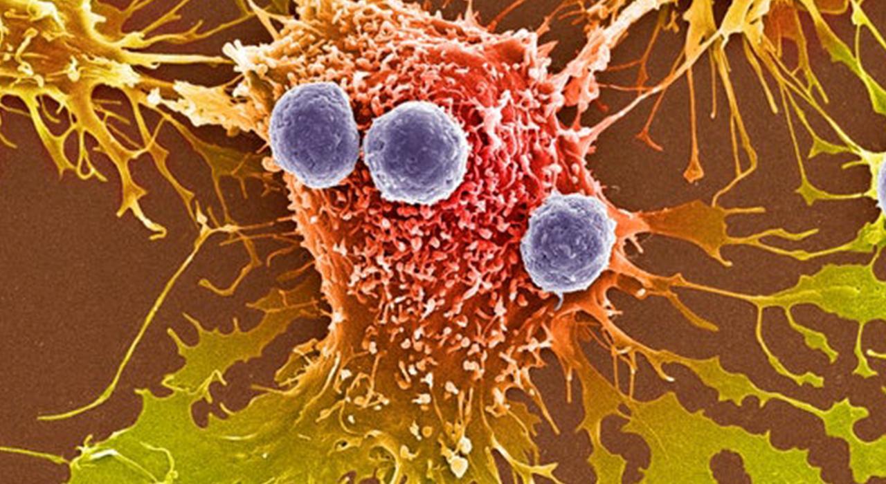 Especialización en Medicina Genómica y Avances en Medicina Integrativa