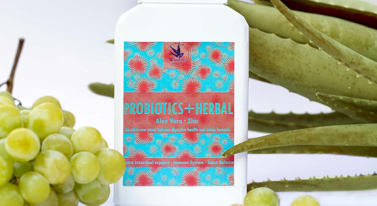 Formación en Probióticos, Prebióticos, Microbiota y Salud