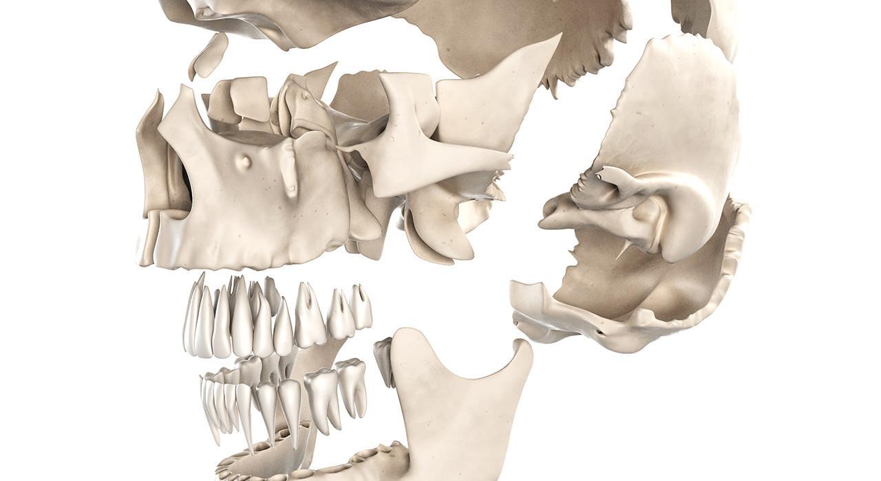 Especialización en Ortodoncia y Cirugía Ortognática