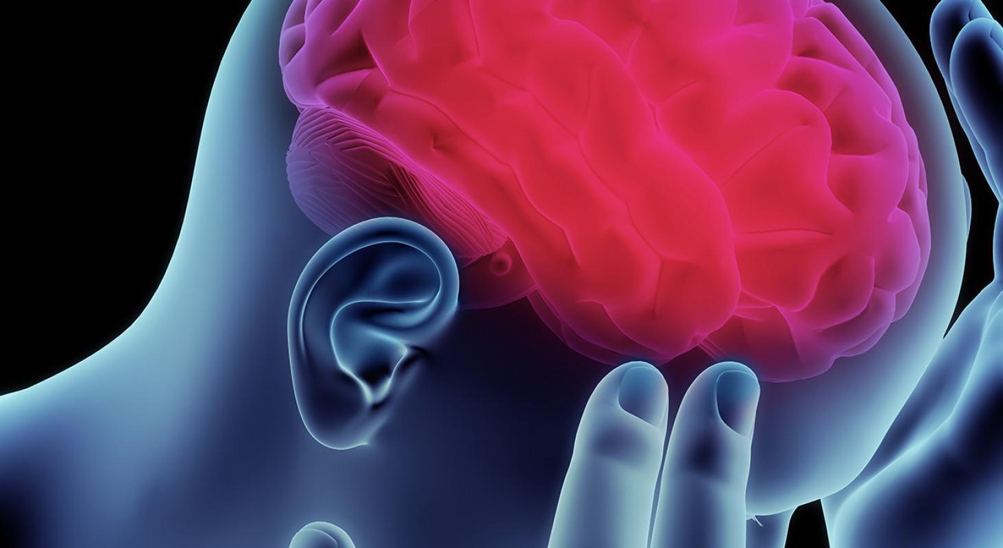Neuroanatomía y Trastornos Mentales