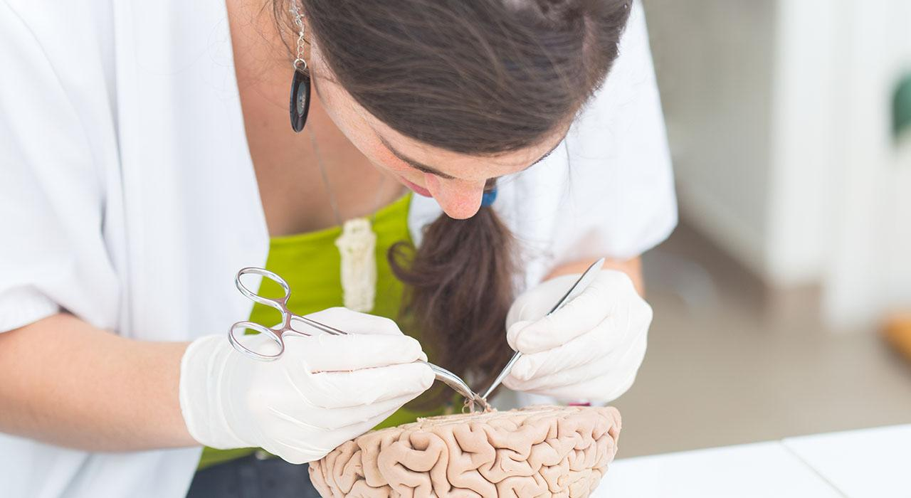 Diplomado en Tratamiento Farmacológico de la Enfermedad Mental