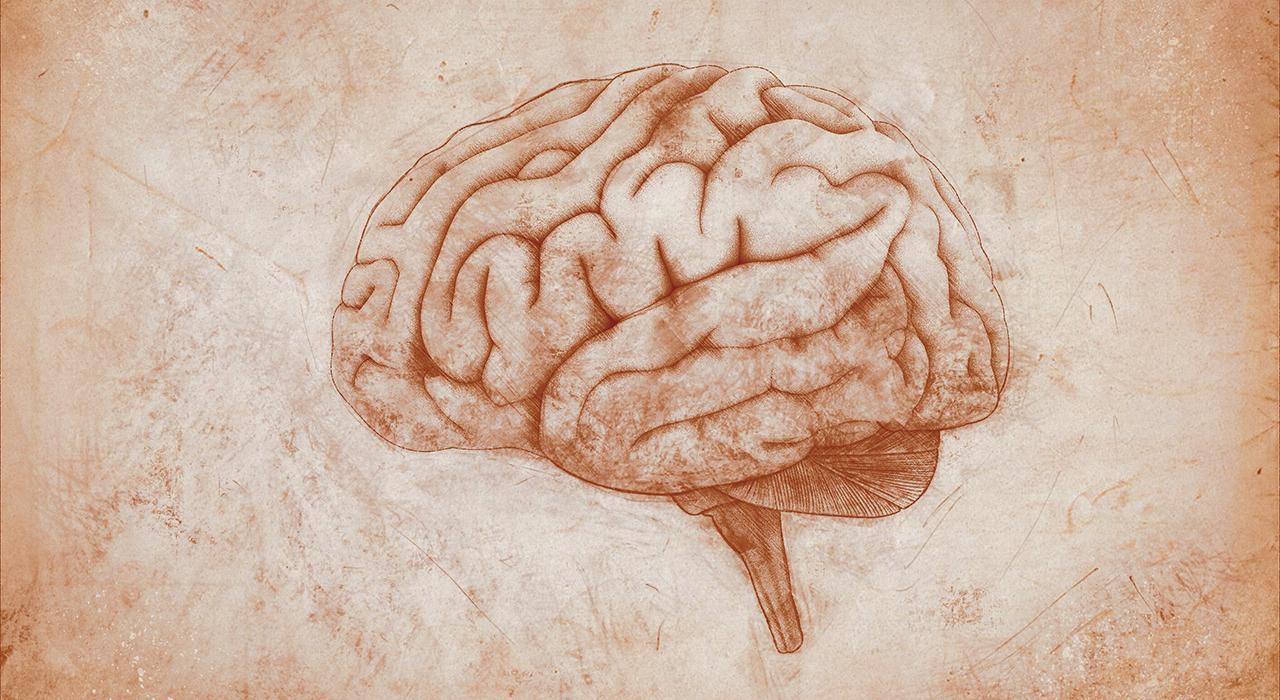 Programa en Tratamiento Farmacológico de la Enfermedad Mental