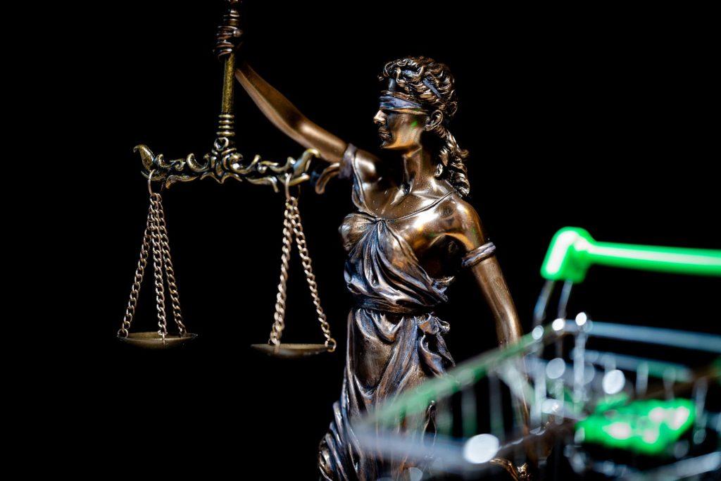 Las distintas ramas del derecho hacen parte de como se conforman los niveles de el cuerpo judicial.