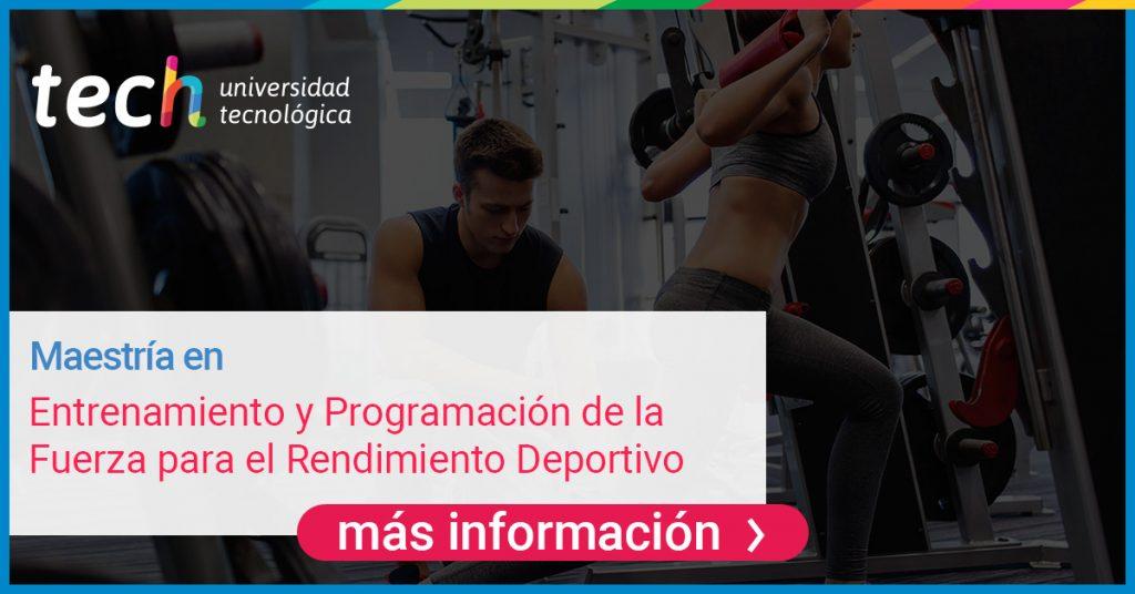 El sistema músculo esquelético hace parte vital del desarrollo del movimiento en el cuerpo humano.