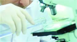 curso investigación en enfermedades infecciosas