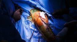 especializacion cirugía ortopédica y traumatología de miembros superiores