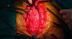 master cirugia plastica reconstructiva Tech Universidad