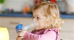 experto universitario fisioterapia respiratoria pediatrica valoracion rehabilitadora