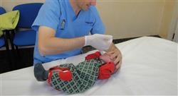curso actualización en trastornos funcionales digestivos en pediatría