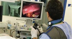 curso nuevas perspectivas en enfermedad celíaca en pediatría