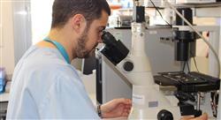 formacion innovación en gastrohepatología pediátrica