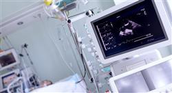 experto universitario ecografía clínica abdominal y músculo esquelética para emergencias y cuidados críticos