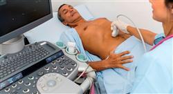 especializacion online abordaje ecográfico de los grandes síndromes y en procedimientos ecoguiados