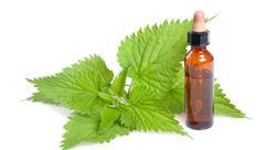 posgrado toxicidad de las plantas medicinales y grupos de riesgo en fitoterapia