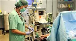 especializacion online anestesia y cuidados críticos