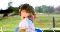 posgrado alergias reumatología y nefrourología en pediatría