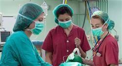 posgrado anestesia pediátrica