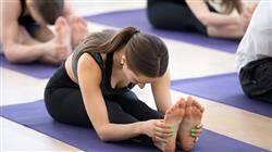 b como aplicae sesion yoga terapeutico medicos
