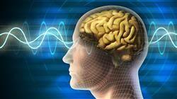 f bases neurofisiologicas relajacion meditacion yoga terapeutico medicina