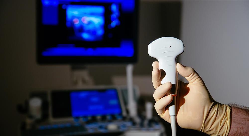 maestria online ecografía clínica para atención primaria