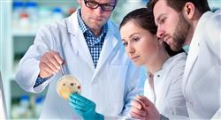 curso microbiología en antibioticoterapia