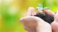 posgrado cooperación y derecho ambiental