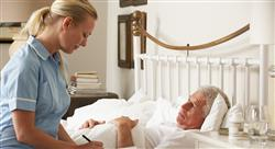 maestria hospitalización domiciliaria