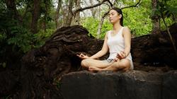 e aplicacion yoga terapeutico practica clinica medicina