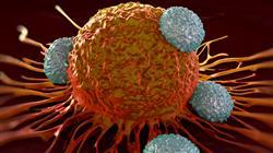 formacion enfermedades autoinmunes