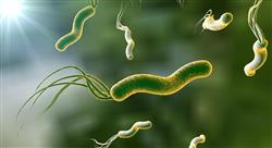 curso enfermedades crónicas no transmisibles y las infecciones