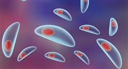 posgrado zoonosis y parasitosis