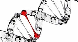 especializacion genómica de la trombosis
