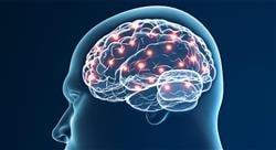 curso neurociencias para médicos