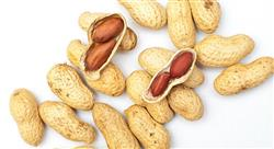 diplomado enfermedades alérgicas alimentarias