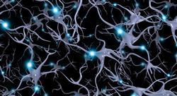 especializacion neuroeducación prácticas motrices y desarrollo cerebral en medicina