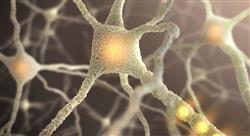 posgrado neurociencias