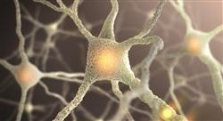 formacion neurociencias aplicadas para médicos