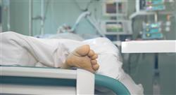 formacion unidades de cardio oncología pautas de seguimiento y líneas de investigación