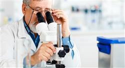 experto universitario investigación y tic en medicina integrativa