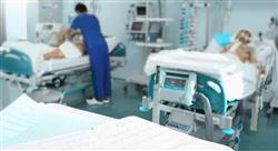 formacion panorama actual de los cuidados paliativos