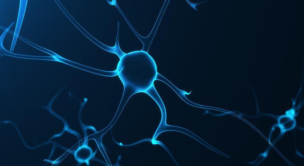 especializacion online abordaje fisioterápico de las complicaciones en el daño cerebral adquirido para el médico rehabilitador