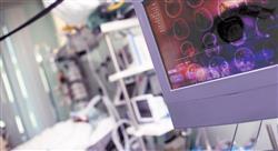 especializacion abordaje fisioterápico de las complicaciones en el daño cerebral adquirido para el médico rehabilitador